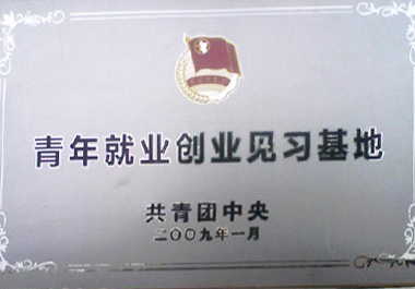 "In January 2009, the ""Youth Restaurant"" is recognized as ""youth employment and entrepreneurship internship base"" by the Central Committee of the Communist Young League."